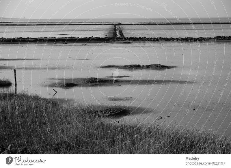 The Wadden Sea World Heritage Site in Bensersiel near Esens in East Frisia on the coast of the North Sea, photographed in classic black and white