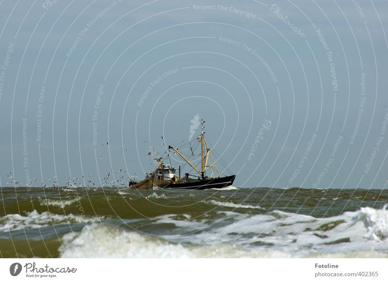 Ahoy there! Environment Nature Elements Water Waves North Sea Ocean Navigation Fishing boat Watercraft Cool (slang) Cold Wet Crab cutter Seagull Flock of birds