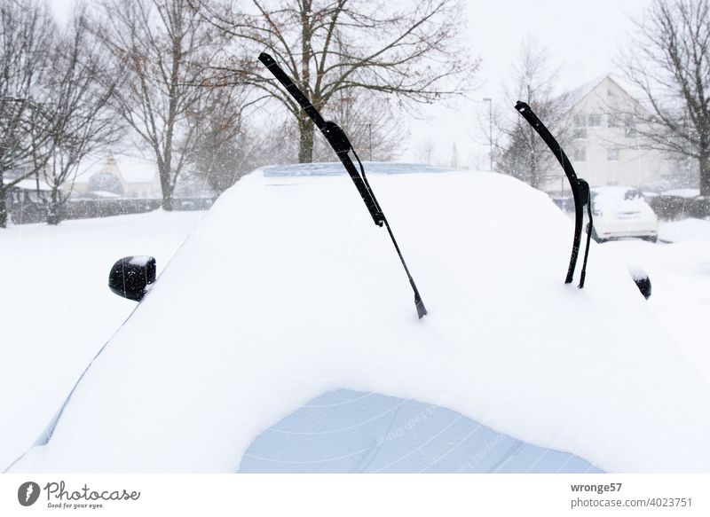 2 cut off windshield wipers sticking out of a car covered with snow Windscreen wiper Snow Winter snow-covered chill folded down Cold Winter mood Winter's day