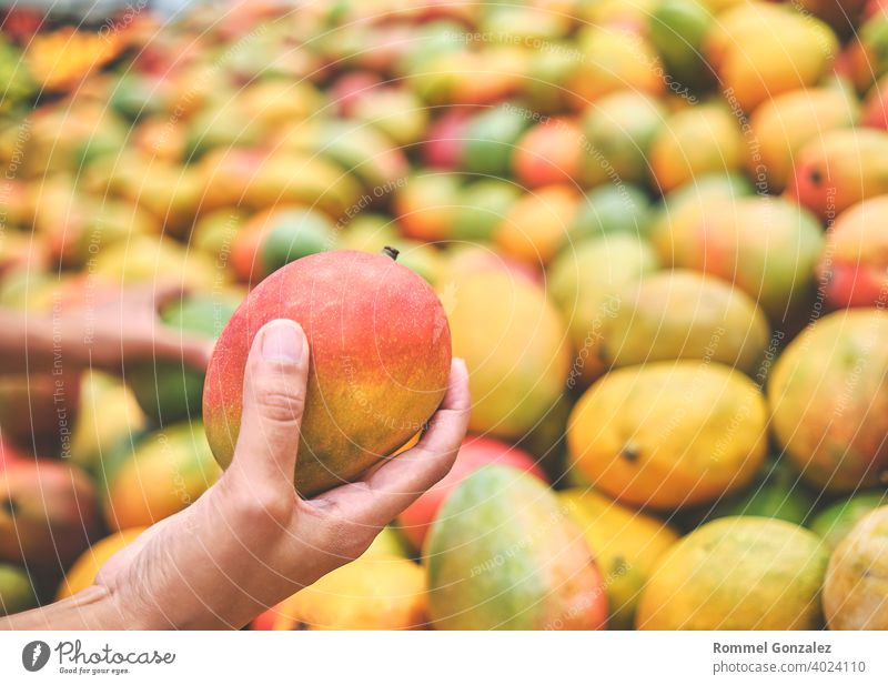 Young Woman Choosing Mango in Grocery Store. Concept of healthy food, bio, vegetarian, diet. ecological agriculture organic food vitamins retail option variety