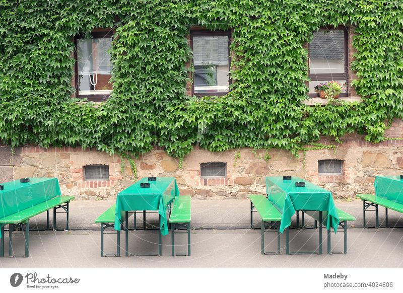 Green beer set with tablecloths made of oilcloth in front of old green facade at the Golden Oldies in summer in Wettenberg Krofdorf-Gleiberg near Giessen in Middle Hesse