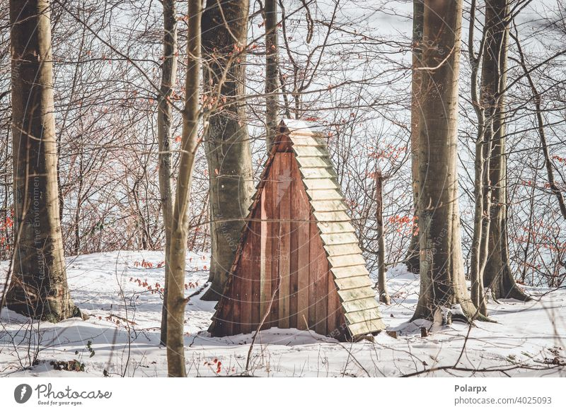 Small shelter in a forest with snow hut tiny denmark forestry cottage explore scandinavia beech day hunting forage fodder timber nobody outdoors outside feeder