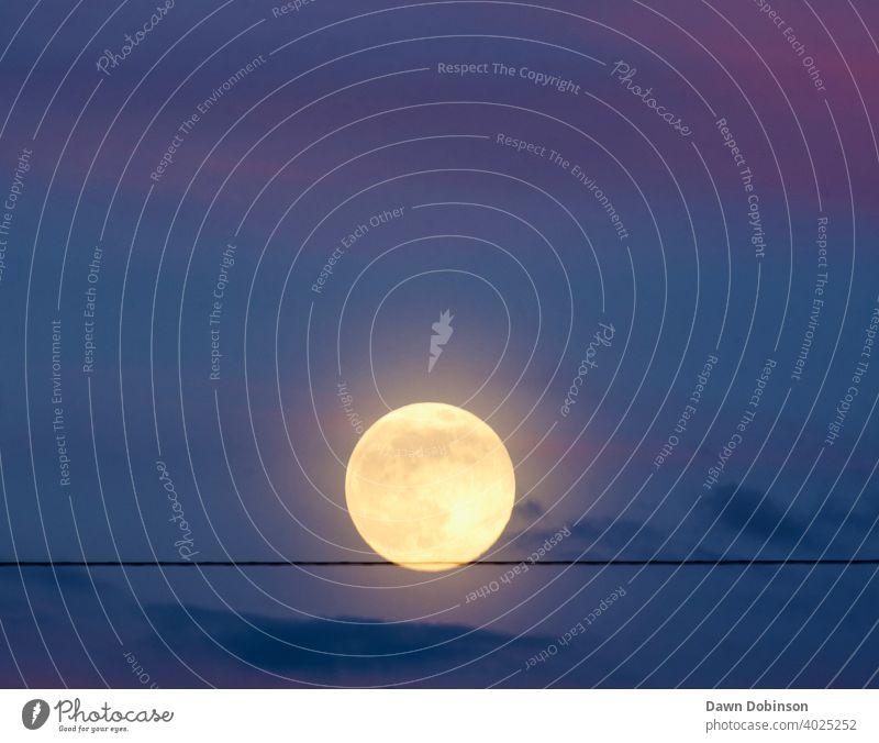Full Moon appearing to balance on a wire in a twilight sky Full  moon Exterior shot Sky Evening Blue Colour photo Nature wispy clouds round Landscape Moonlight