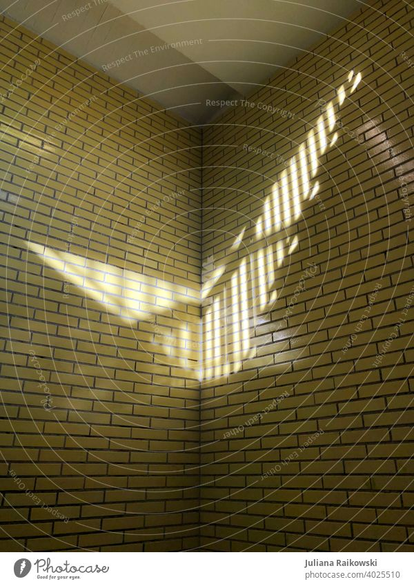 Light on the yellow tiled wall Light and shadow Subway Shadow Deserted Colour photo Berlin Capital city Contrast Sunlight Architecture Facade Manmade structures
