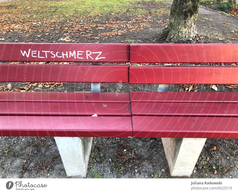 Bank with the word Weltschmerz weltschmerz Sadness Loneliness Park bench Grief Deserted Exterior shot Colour photo Calm Day Autumn Relaxation Transience