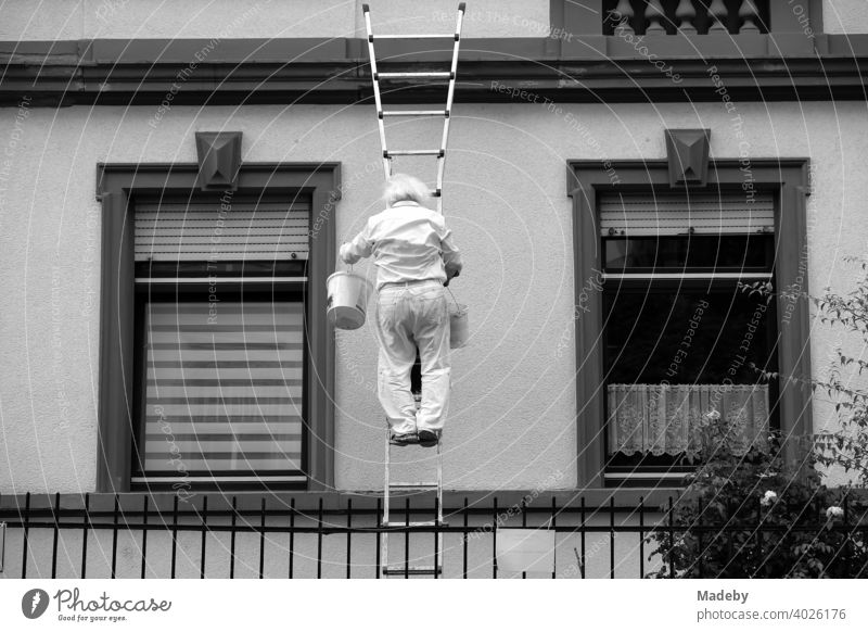 Master painter with white hair and bucket on the ladder at the facade of an old building in the north end of Frankfurt am Main in Hesse, photographed in classic black and white