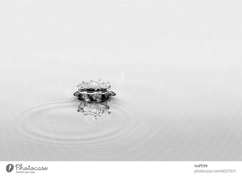 Water tropics fall and create figures Drops of water Abstract Rain Surface of water Detail droplet drop formation drop picture Liquid To fall Glittering Cold
