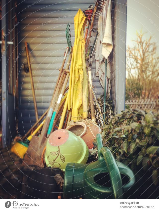 Off through the hedge! Gardening Garden fence Gardenhouse Garden plot Watering can Exterior shot Tool Shed Devices Rake Clay pot Hedge Nature