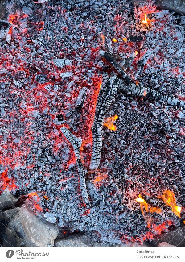 On hot coals Fire Embers ash Coal Hot Burn Wood ardor Flame Glow Fireplace Warmth Red Orange Gray Smoke