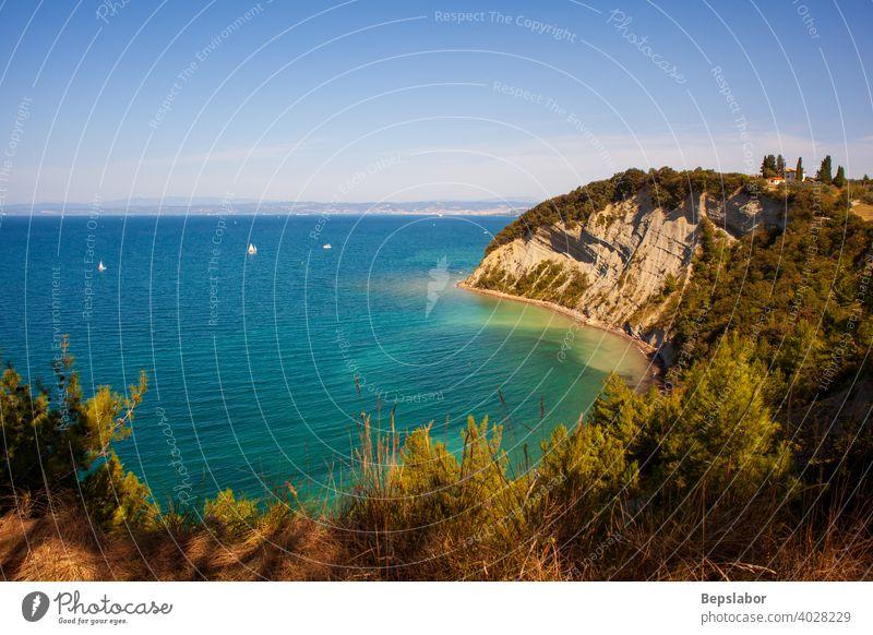 Strunjan cliff on the Coast linę of Slovenia. strunjan slovenia adriatic sea travel summer bay beach shore simplicity horizontal see vivid effortless recreation