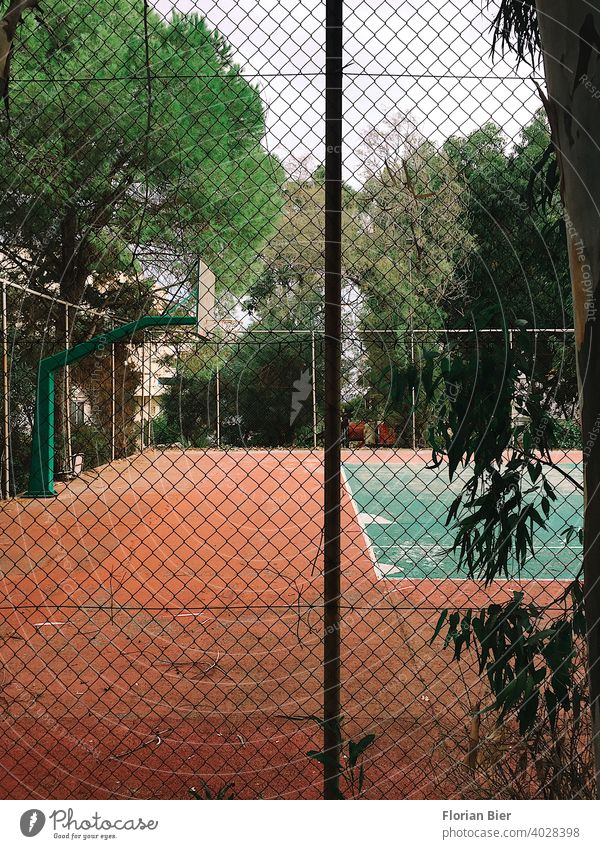 Fenced sports field with the possibility to play basketball and tennis surrounded by trees Sports Sporting grounds Ball sports Playing Playing field Places Line