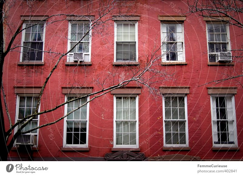 City Tree Red House (Residential Structure) Winter Window Wall (building) Architecture Wall (barrier) Building Facade Idyll Living or residing Branch USA