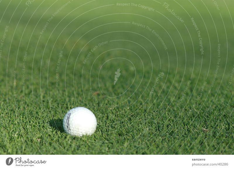 golf ball Golf ball Grass surface Sports