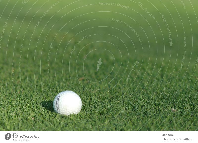 Sports Grass surface Golf Golf ball