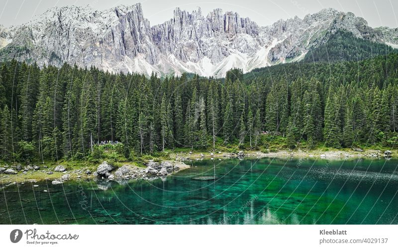 The Karer Lake in the Eggental Dolomites - Water Nymph?! Myths and fairy tales?! latemar Rose garden Mountain Peak Beautiful weather pale mountains duckweed