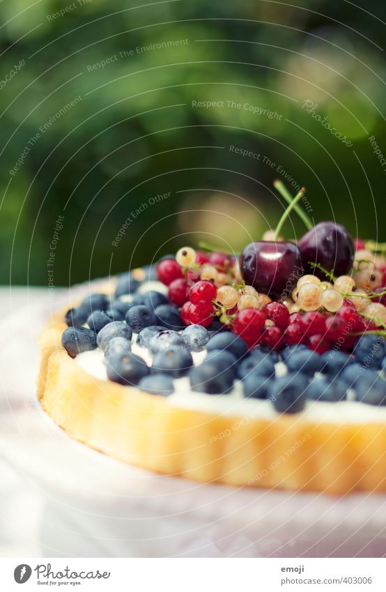 Summer Fruit Nutrition Sweet Candy Delicious Cake Berries Picnic Summery Dessert Cherry Vegetarian diet Holiday season Blueberry Redcurrant