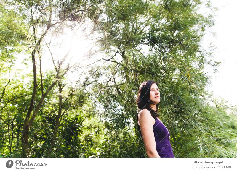 Purple, green and sunny. Summer Feminine Young woman Youth (Young adults) Adults 1 Human being 18 - 30 years Environment Nature Sun Beautiful weather Tree Park