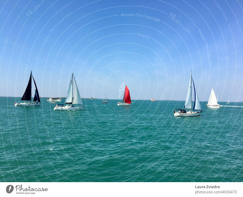 Boat race boat race day sea water sky nature Sports Speed Competition Lifestyle outdoors Sailing Sailboat adventure vessel wind yacht ocean vacation cruise sail