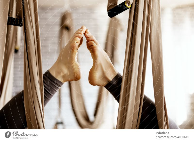 Close-up of a woman's legs in a hammock doing aerial yoga exercises in the gym close female lifestyle balance fit sport fitness young body active health healthy