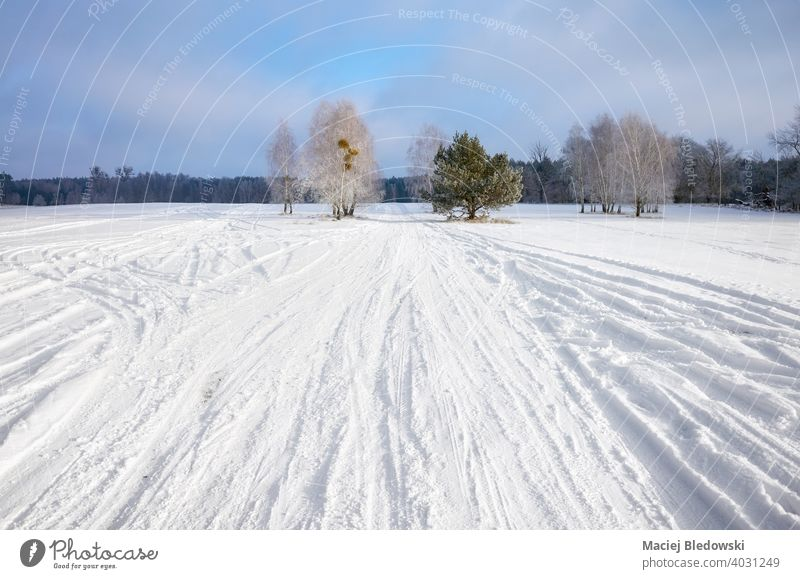 Winter landscape with country road covered with snow. nature winter forest tree path drive travel trip scenery cold white season no people sky wilderness