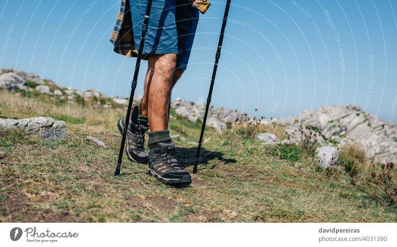 Senior man practicing trekking outdoors unrecognizable walking senior mature trekking sticks countryside nature nordic walking hikers local tourism summer