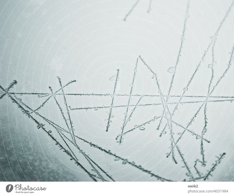 tally Pane Car roof Glass Frost Ice crystal Line Winter Sky Illuminate Thin Freeze Knitting pattern Coincidence Bizarre Long Cold Puzzle Unclear Colour photo