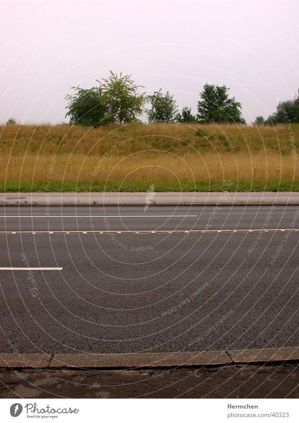 Summer Street Graffiti Asphalt Parallel Traverse