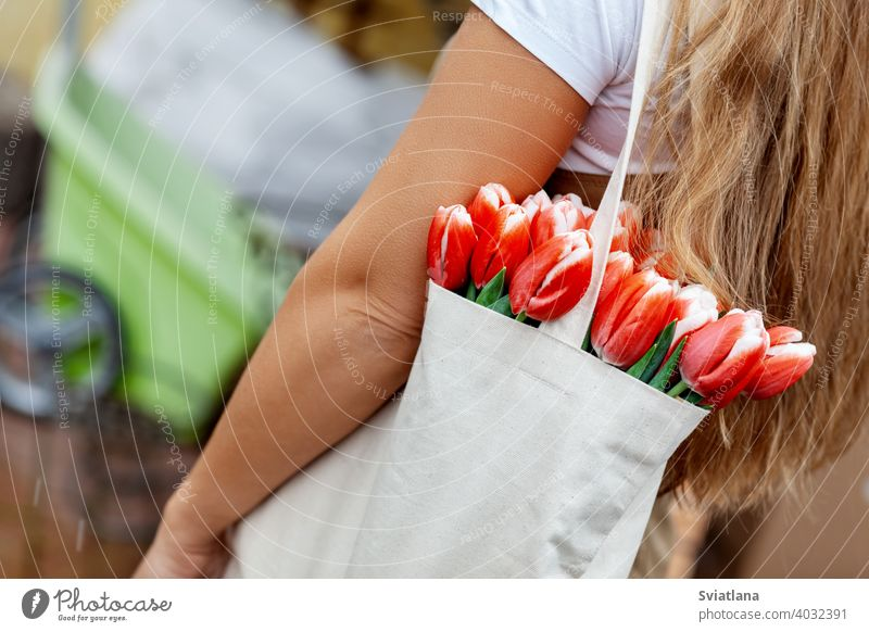 Close-up of a bouquet of tulips in a cloth bag on the shoulder of a girl. Gift for Women's Day, Valentine's Day, Mother's Day happy florist female red bunch