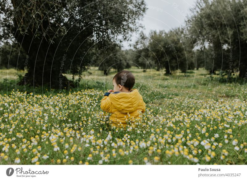Rear view child sitting on flower meadow Spring Spring fever Spring flower Flower meadow Child Yellow Authentic 1 - 3 years explore Curiosity Environment Grass