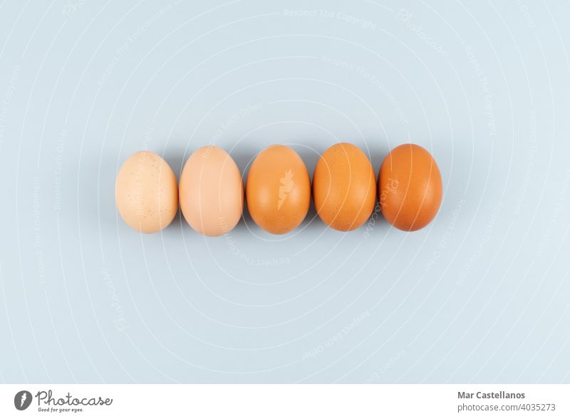 Eggs of different shades of color in a row on a blue background. Copy space. eggs easter copy space top view color shades kitchen food birds chicken holiday