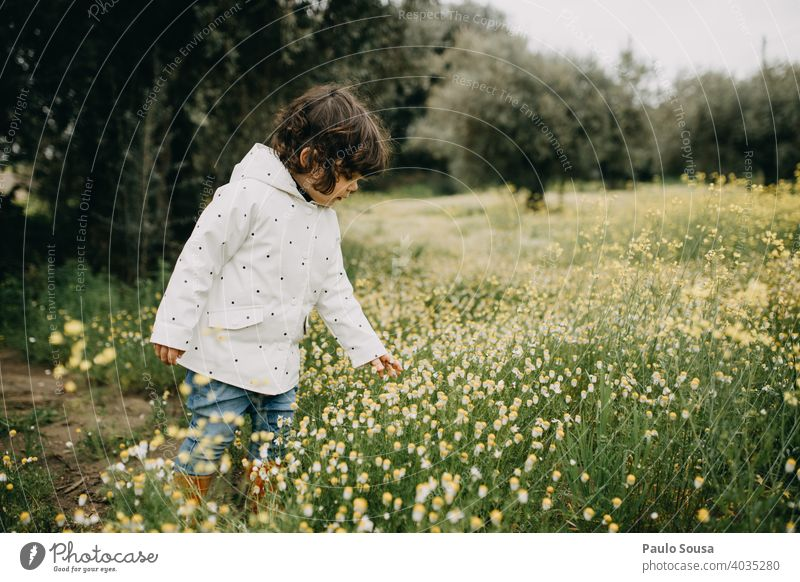 Cute girl picking spring wild daisies Daisy Spring Spring fever Spring flower Authentic Nature Plant Colour photo Blossom Blossoming Exterior shot Deserted