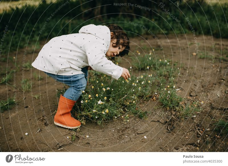 Child picking spring flowers Spring Spring fever Spring flower childhood Spring day Blossoming Day Garden Exterior shot Plant Colour photo Flower Nature