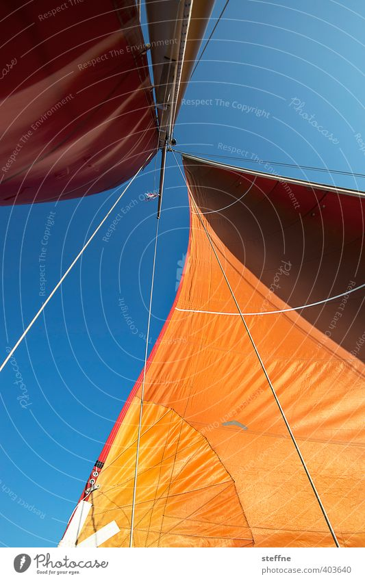 Sail to the weekend Navigation Boating trip Yacht Sailboat Sailing ship Adventure Relaxation Freedom Vacation & Travel Orange Colour photo