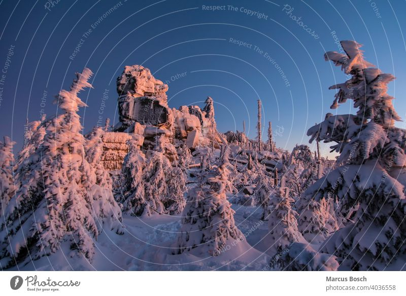 Winter landscape in the evening light Triple chair Triple chair rock Rock Frost Summit Rocks granite rocks Sky Coniferous forest forests Forest woodland