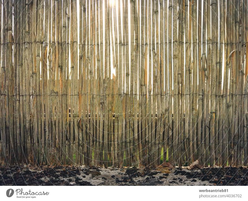 Weathered old garden reed fence gardening weathered damaged scratched security safety sunny opaque culture natural traditional nature park beige season pattern