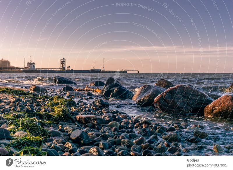 Beach with rocks near an industrial harbour Harbour Industry Crane Sky Dusk Clouds Jetty Container Logistics Container terminal Exterior shot Navigation Vierow