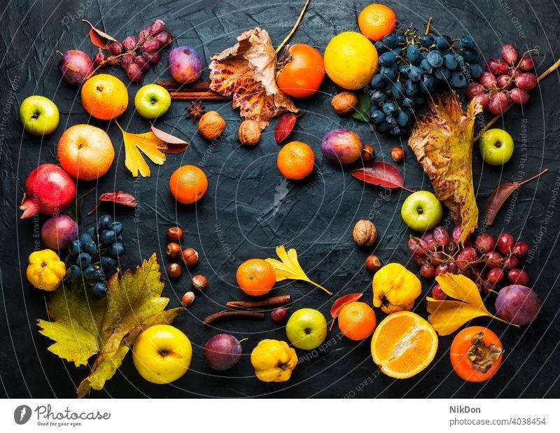 Harvest of autumn fruits harvest ripe fall autumnal vitamin variety collection food apple grape october mandarin raw natural organic fall fruits season