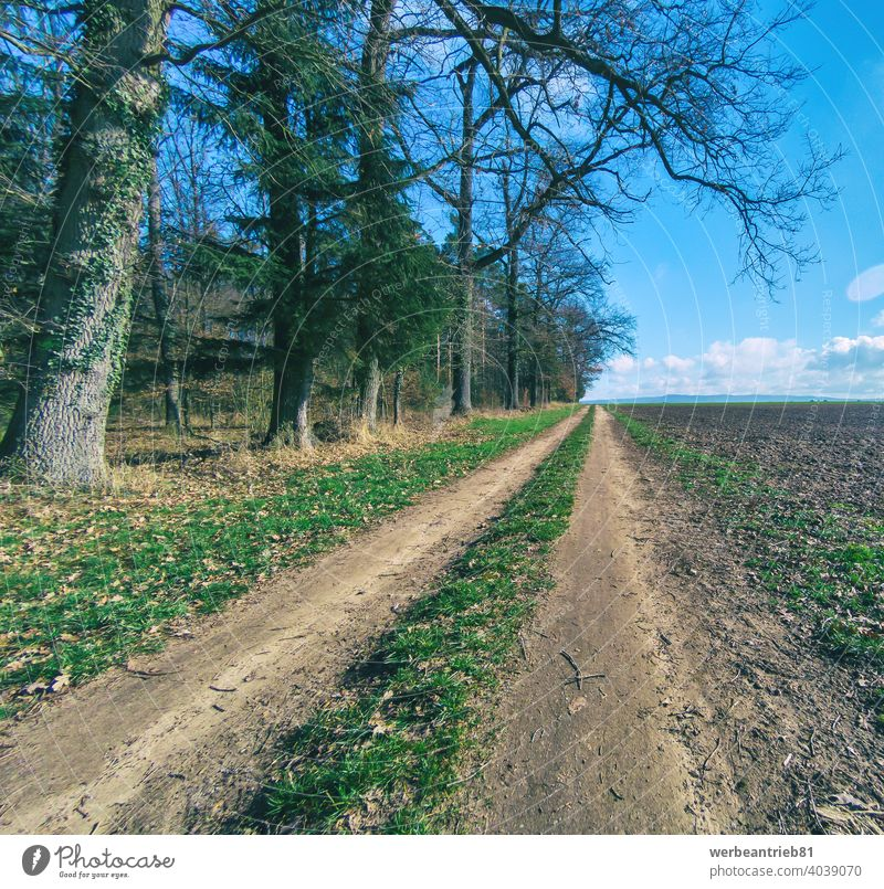 Dirty farm road between a field to the right and trees to the left dirty dirt path way cycleway bikeway tranquility winter germany rural landscape agriculture
