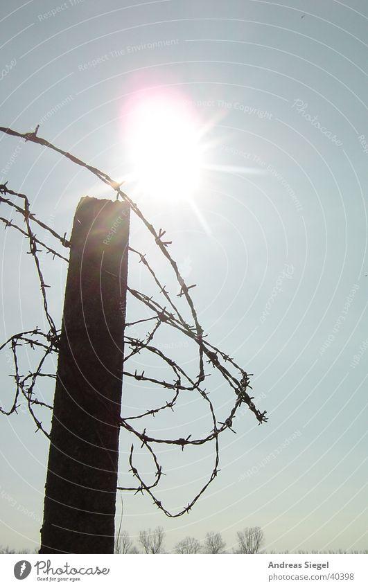 Prickly affair Back-light Barbed wire Rust Wire Muddled Wildau Sun concrete pillar Rotate