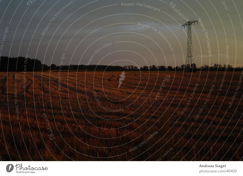 Nature Autumn Field Electricity Cable Electricity pylon Skid marks Edge of the forest