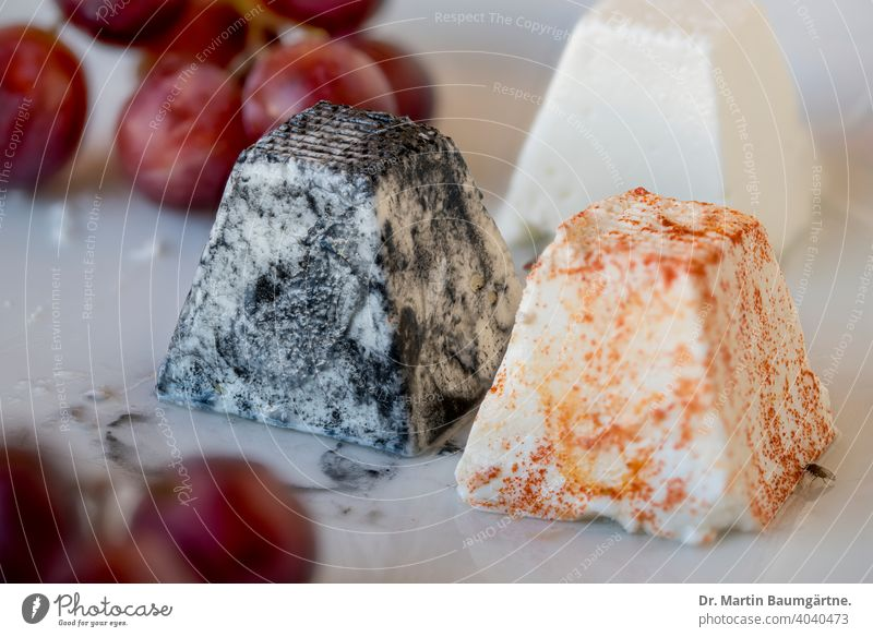 French soft goat cheese Soft goat cheese Goat`s cheese Cheese soft cheese mlt spices Bunch of grapes Dish shallow depth of field