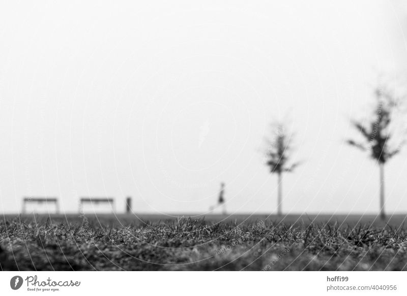 a blurry scene in the fog with bench, tree, joggering, jogger and trashcan Adults blurriness Jogger Walking Human being Movement Silhouette minimalism Fog