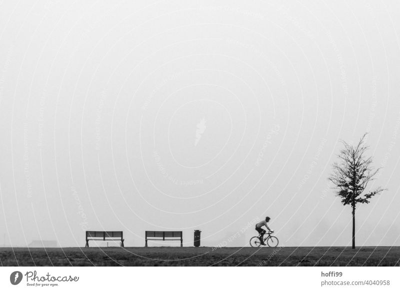a scene in the fog with bench, tree, cyclist and garbage can Cycling Adults Bicycle Human being Movement Driving Silhouette minimalism Wheel Fog rubbish bin