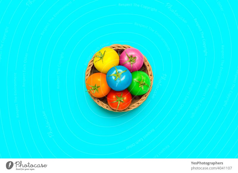 Easter concept with multi-colored tomatoes in a basket, top view above view abstract art blue bright childish colored background colorful coloured copy space