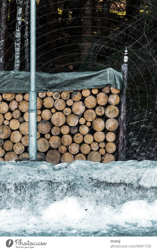 Stockpiling with firewood and only one empty beer bottle Stack of wood Lamp post Bottle of beer Environmental pollution Snow Fuel Firewood Wood Brown stacked