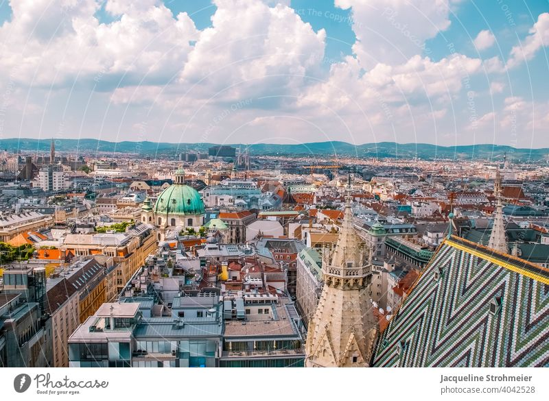 View from St. Stephen's Cathedral - above the rooftops of Vienna, Austria vienna above the roofs Dome Church spire from on high Skyline Vantage point