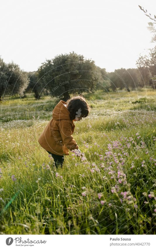 Cute girl picking spring flowers Child childhood Caucasian 1 - 3 years Spring Spring flower picking flowers Pick Authentic Environment Meadow outdoors