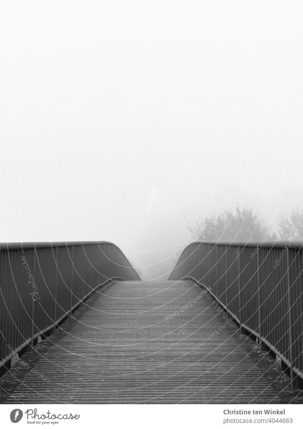 View over a bridge, the path disappears in the foggy nothingness Bridge pedestrian bridge off Pedestrian crossing Lanes & trails Fog Misty atmosphere trees