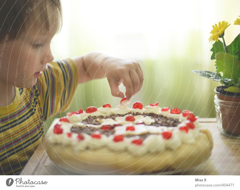 Human being Child Eating Feasts & Celebrations Food Infancy Birthday Nutrition Cute Sweet Candy Toddler Delicious Cake Cream Gateau
