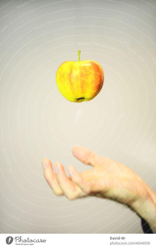 Healthy diet - apple Apple Healthy Eating vitamins fruit Delicious Fruit Diet Food Hand salubriously